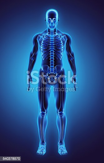 istock 3D illustration Part of Human Skeleton, medical concept. 540378570