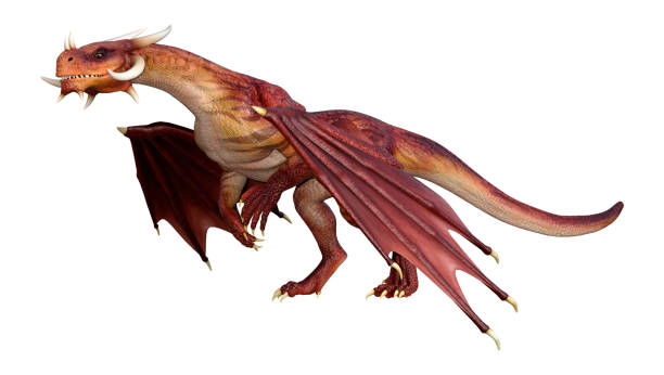 3D illustration red fairy tale dragon on white 3D rendering of a red fairy tale dragon isolated on white background dragon stock pictures, royalty-free photos & images