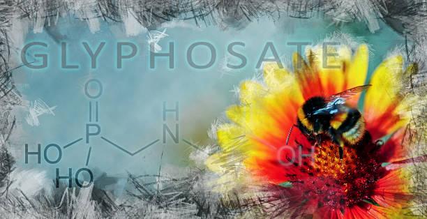 darstellung der auswirkungen von glyphosat auf die biologische vielfalt - honig wirkung stock-fotos und bilder
