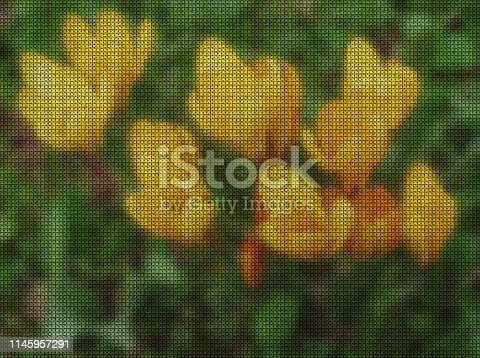 istock Illustrations. Cross-stitch. Saffron, Crocus. 1145957291