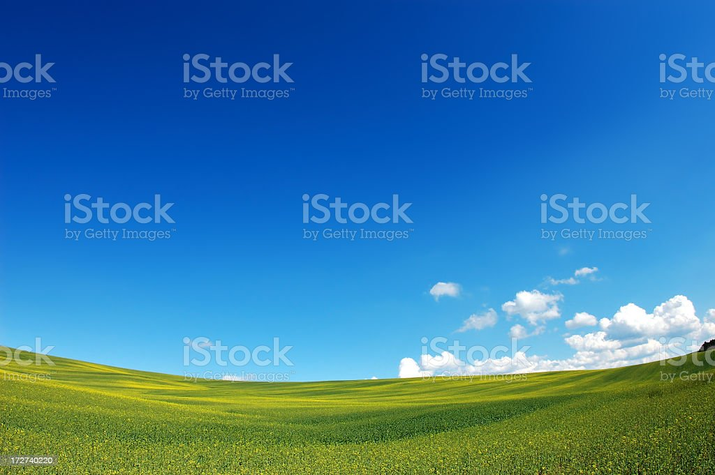 Image corrupt so cannot see to write a description royalty-free stock photo