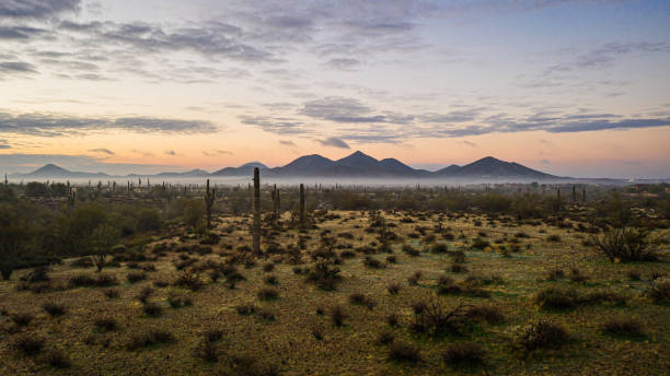 Image from a drone of fog in the Sonoran Desert of Arizona stock photo