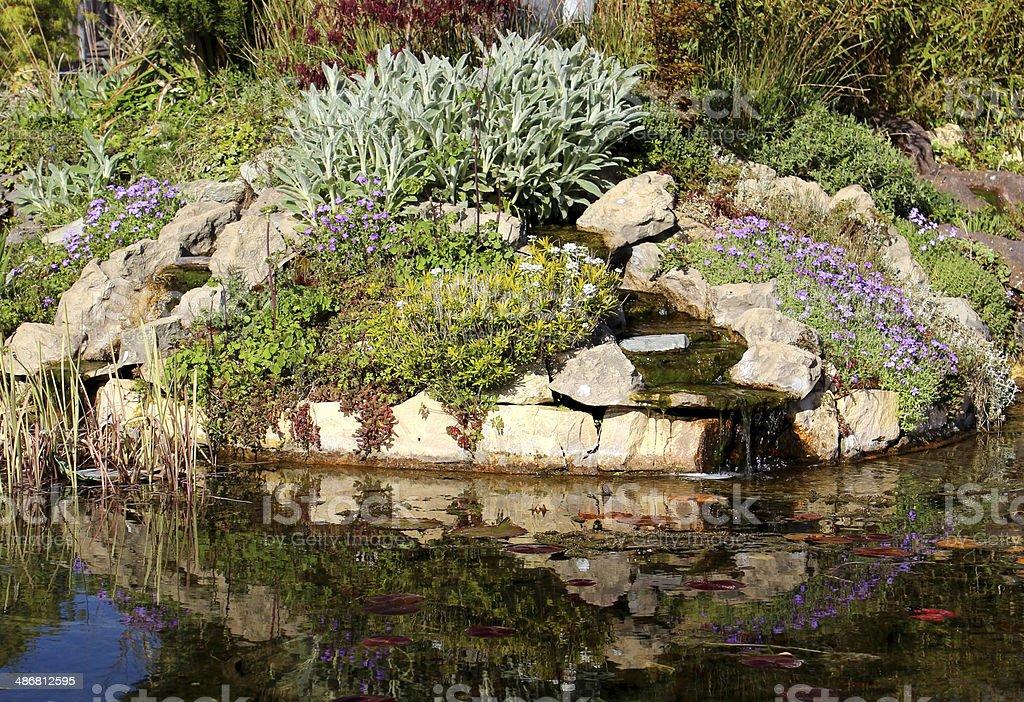 Laghetto Con Cascata Da Giardino : Immagine di un laghetto con pesci giardino con cascata e rockery