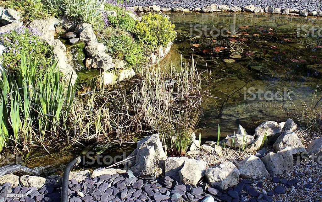 Bild Von Einem Garten Mit Wasserfall Und Fischteich Rockery Stock