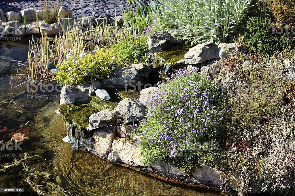 Image of a garden fish pond with waterfall and rockery royalty-free stock photo