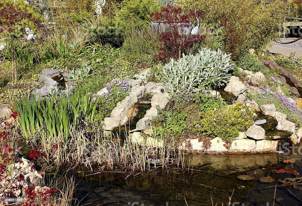 image dun jardin avec cascade et bassin poisson pierre photos et plus d 39 images de boisson. Black Bedroom Furniture Sets. Home Design Ideas