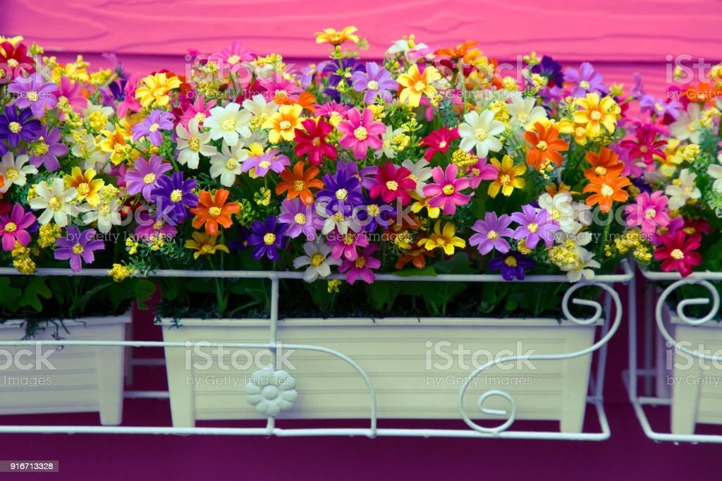 iStock & Image Of A Plastic Flowers Artificial Flowers Flowers In ...