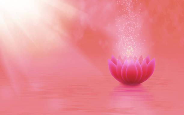 bild einer stilisierten lotusblüte im wasser - lotus zeichnung stock-fotos und bilder