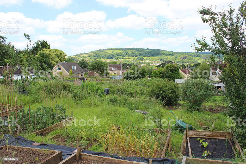Image Dattribution Jardin Potager Avec Des Lits Sureleves Dans Un