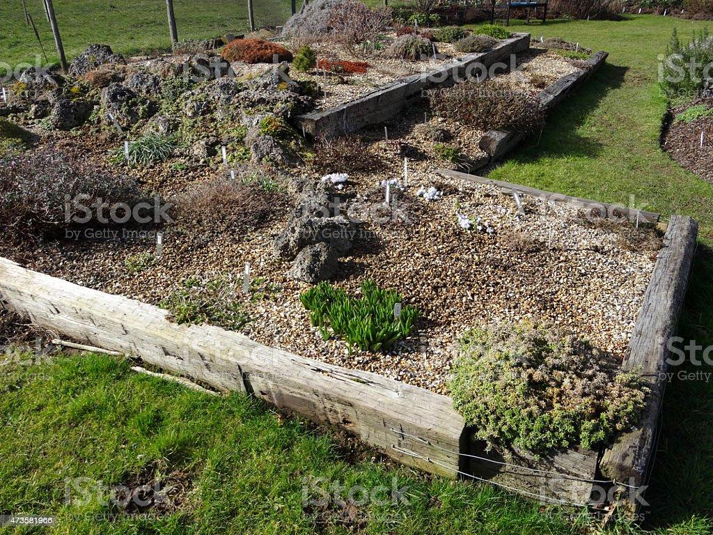 Image of Alpine garden with railway sleepers, tufa-rocks, low-growing plants stock photo