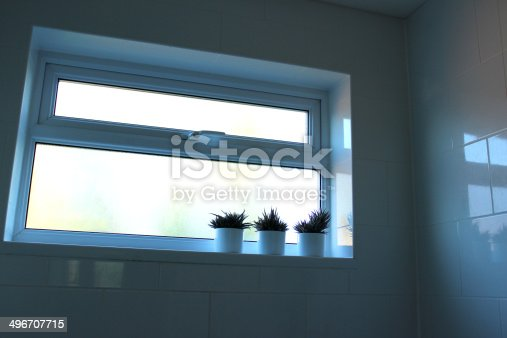Photo showing a stylish window in a modern white bathroom, with a line of three matching cacti (zebra cactus plants) in round white pots.