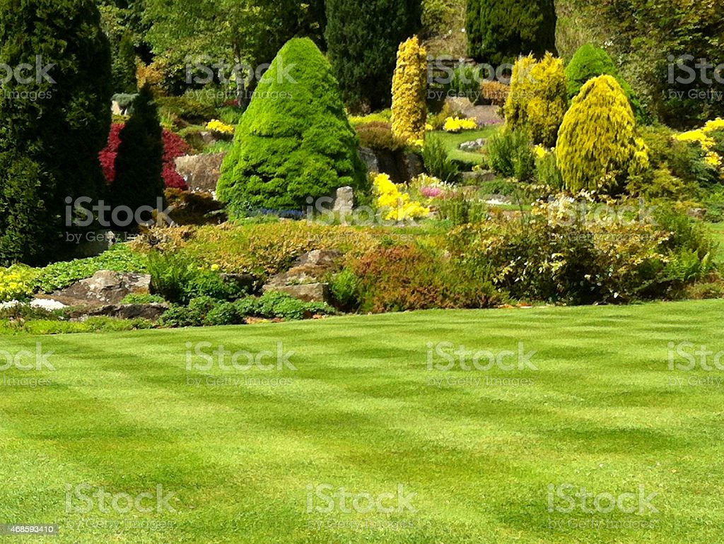 Image of beautiful green garden lawn, grass stripes, checkerboard effect stock photo