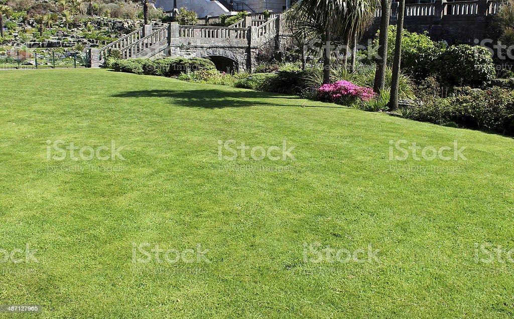 Bild Von Schönen Rasen Gras Wachsen Im Garten Mit Blumen Stockfoto