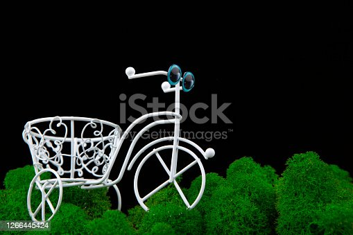 image of bicycle moss dark background