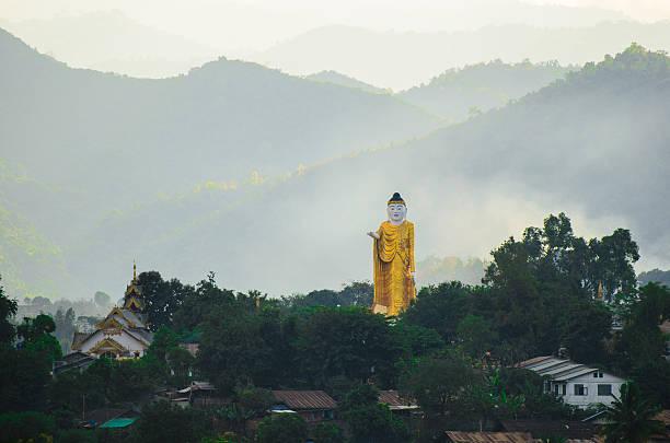 bild von buddha, wag. - spielerfrauen stock-fotos und bilder