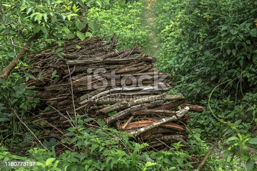 Image of bundles of dry drift, firewood in a rural india village in the Himalayas.