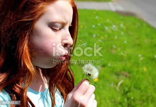 Photo showing a pretty child with long red hair blowing dandelion seeds into the wind in the early summer.  The seeds of this nuisance weed soon vanished around the garden, ready to germinate into more dandelion plants / flowers.