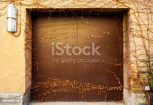 istock Image of death and dry small vines covered on old steel doors building and wall background. 994689706