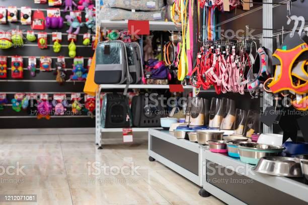 Image of different species of goods in pet store picture id1212071081?b=1&k=6&m=1212071081&s=612x612&h=x7rwiijocxow1wenhcr2dp2tarjm6qrzxbmplgahy1k=