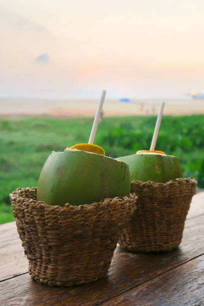 Image of drinking fresh coconut water / milk from straw, tropical coco gelado drink from green coconut juice in woven straw basket with sunset beach in Goa / Kerala, India, natural refreshments for tourists on Indian holiday vacation with two coconuts Stock photo of drinking from two green coconuts with straws on beach holiday, tropical coconut milk / water served in baskets with Goa beach sunset in background, idyllic paradise setting. gelado stock pictures, royalty-free photos & images