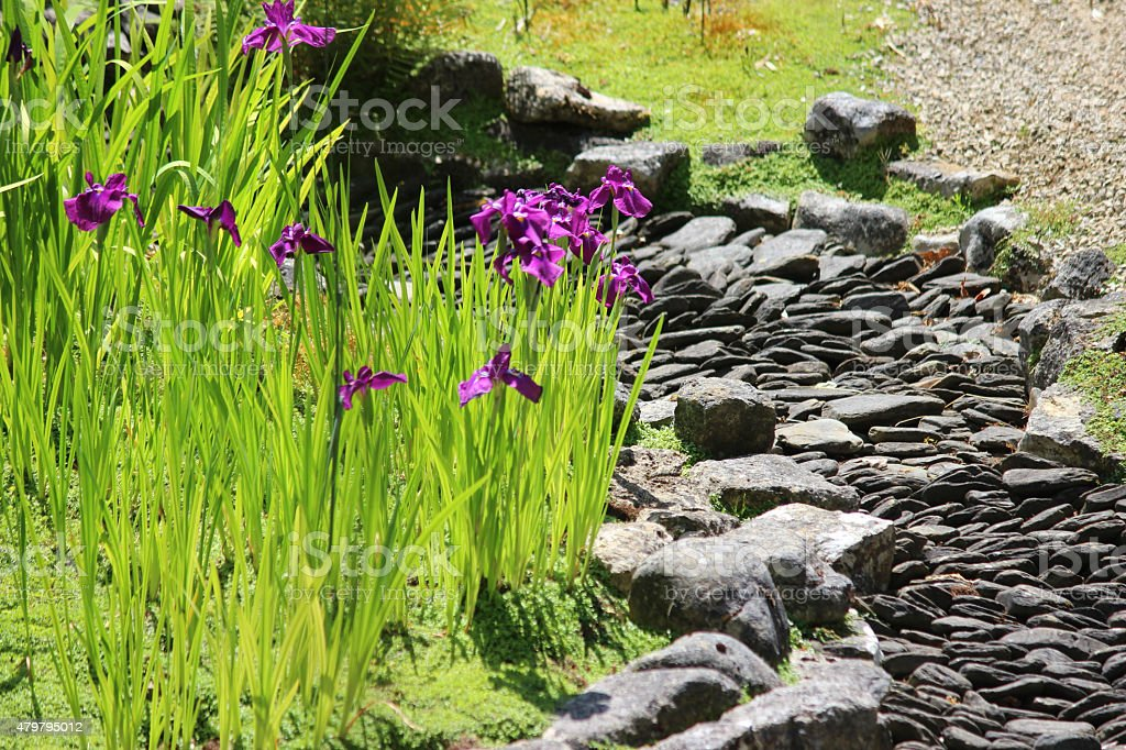Image of dry river in Japanese garden with slate paddlestones stock photo