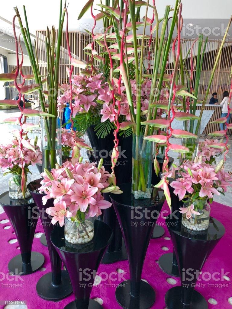 Imagen De Orquídeas Exóticas Flores Muestran Foto De Arreglo