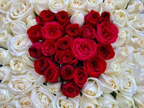 Image Of Flat Red Rose Heart Shape Flowers Box Romantic ...