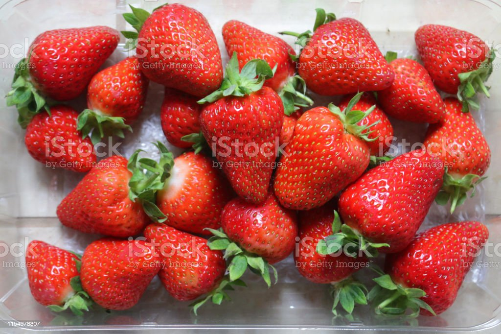 Stock photo of freshly picked Somerset English / British strawberries...