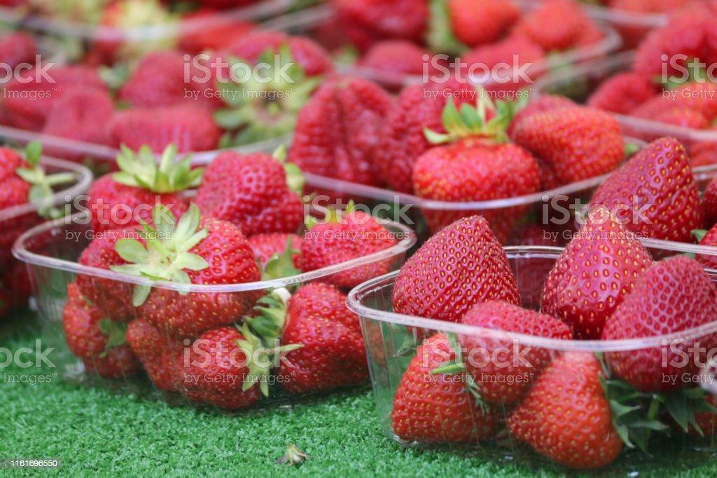 Stock photo of freshly picked Somerset English / British...