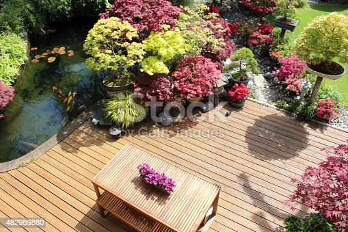 Photo showing a landscaped contemporary Japanese garden with a large expanse of pre-treated timber decking, providing a family space for outdoor furniture - a modern slatted table and benches.  The stained decking has been cut to form a curve around a large koi pond, while other features include Japanese maples, bonsai trees and oriental lanterns.