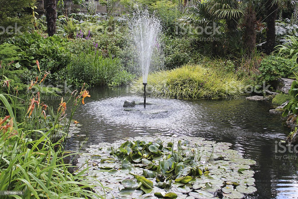 Image of garden pond with fountain, water lilies, flowers royalty-free stock photo
