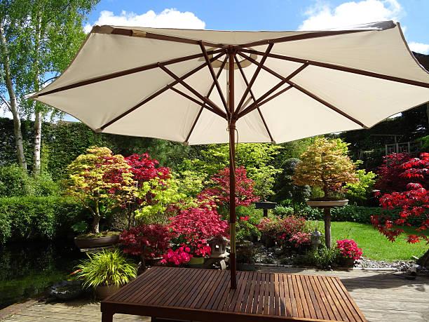 bild von garden tisch mit eis sonnenschirm regenschirm, ahornbäumen, grünen rasen - sonnenschirm terrasse stock-fotos und bilder
