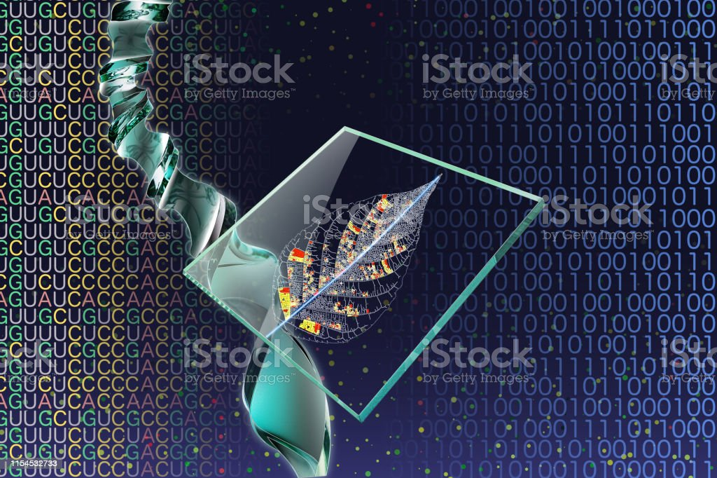 Image Of Genetic Engineering And Dna Microarray Dna Double