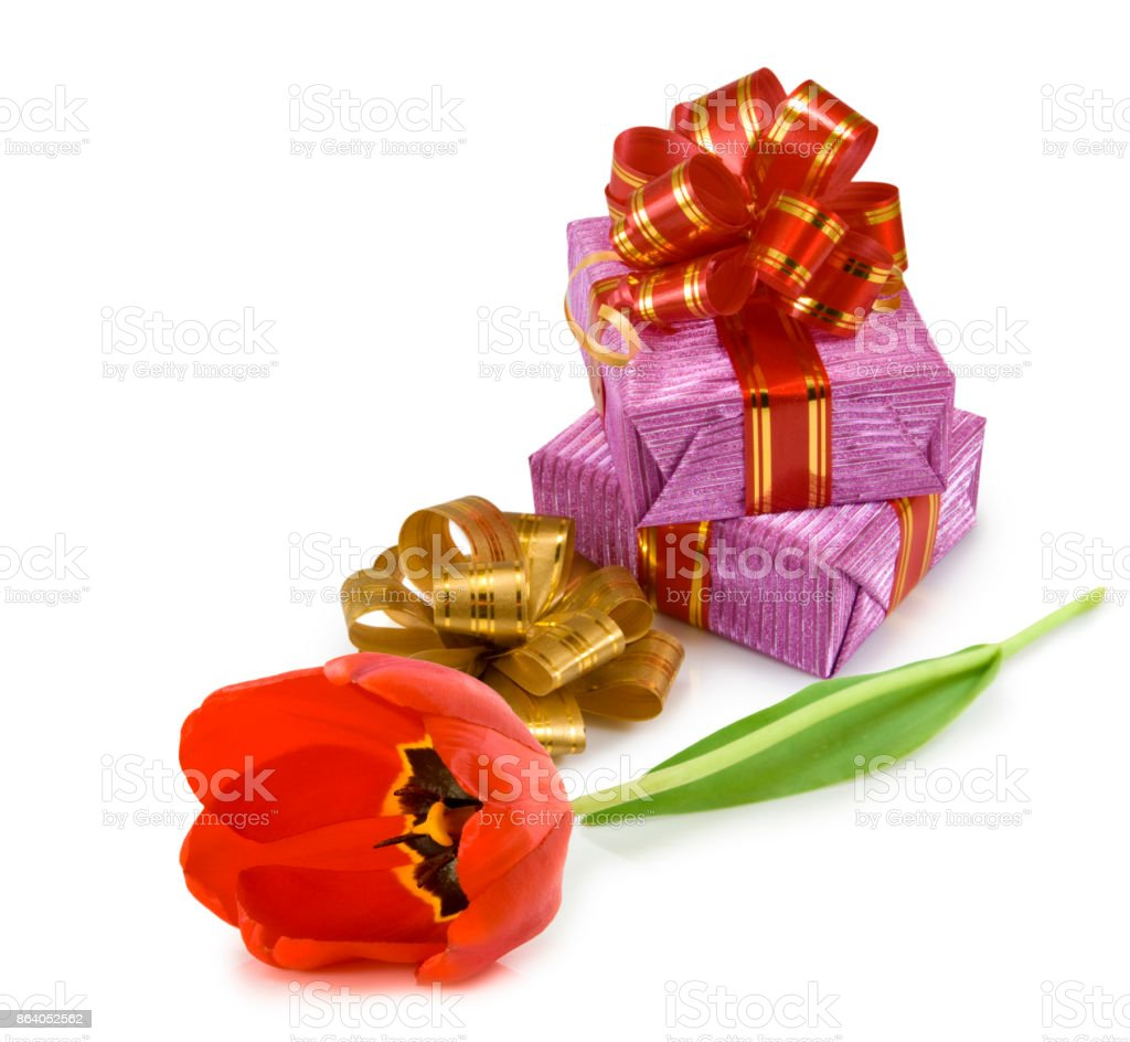 Image of gift box and flower of tulip close up stock photo