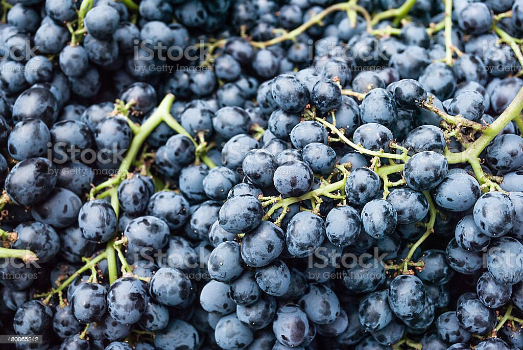 image of Grape, background for used stock photo