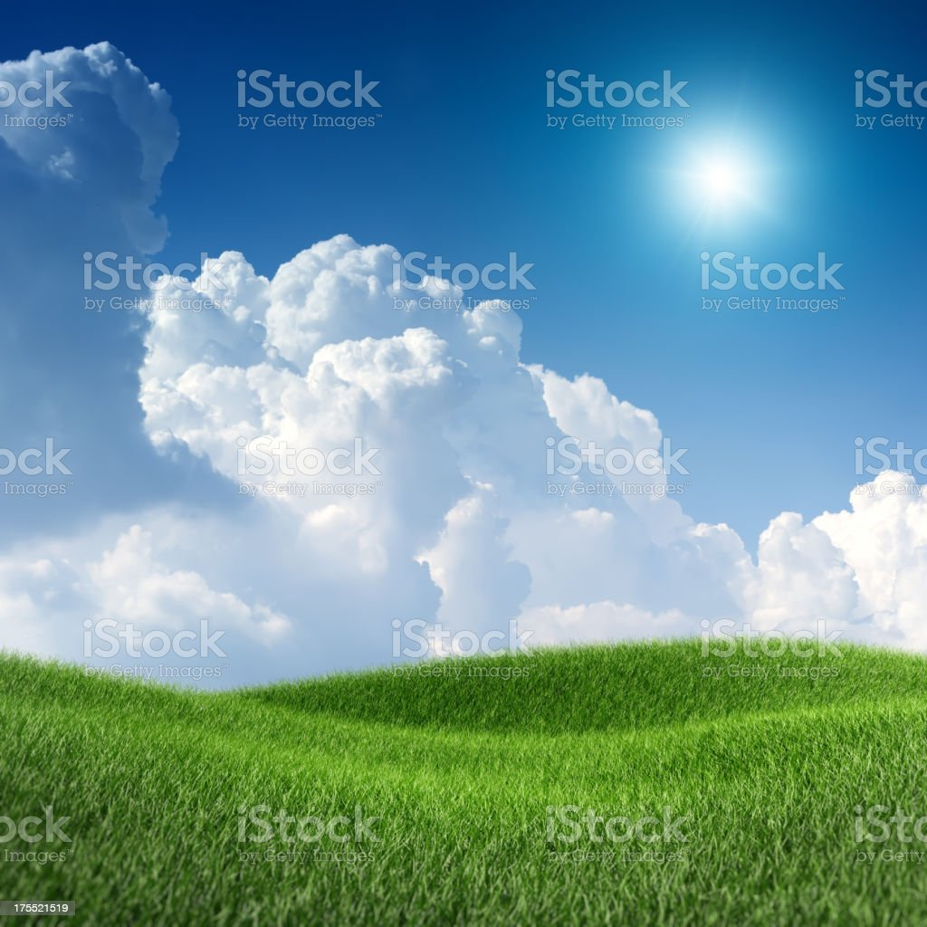XXXL image of green field under the blue sky royalty-free stock photo