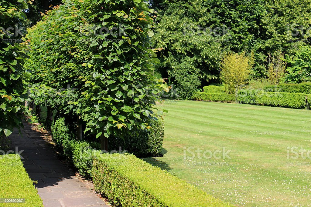 Photo showing a beautiful green garden lawn, which is regularly mown...