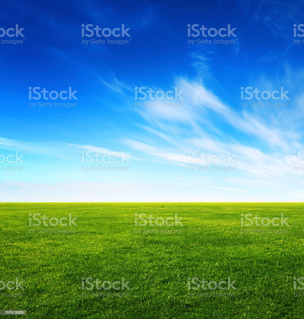 Image of green grass field and bright blue sky stock photo