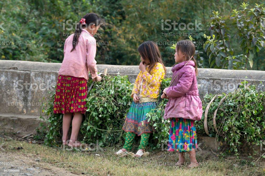 Image of H'Mong minority children in Ha Giang, Vietnam stock photo