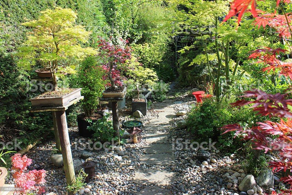 Photo libre de droit de Image Du Jardin Japonais Bonsai Avec ...