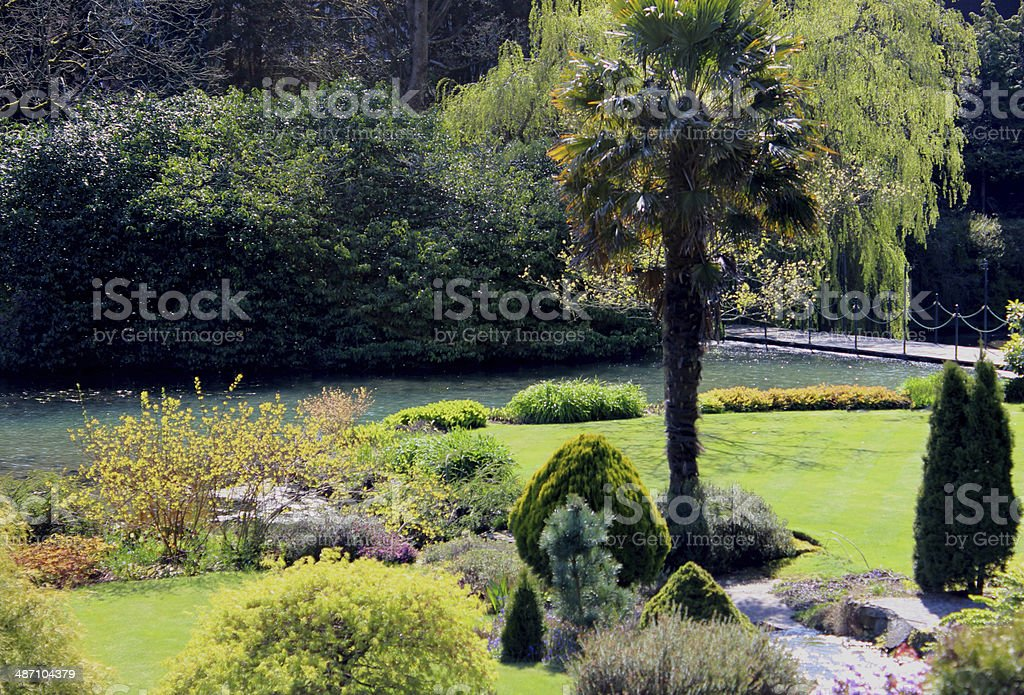 Image of landscaped gardens with shrubs, pond and palm tree royalty-free stock photo
