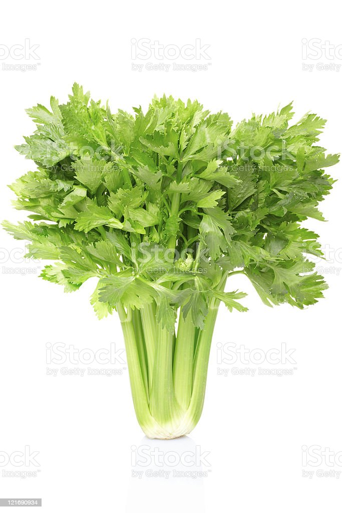 Image of large, green celery bunch on white background stock photo