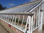 istock Image of long wooden greenhouse painted white, glass-windows providing ventilation 469063866
