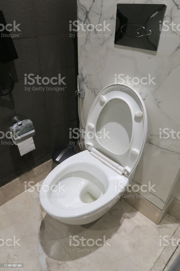 Awesome Image Of Luxury White Indian Toilet With Bathroom Hygiene Gmtry Best Dining Table And Chair Ideas Images Gmtryco