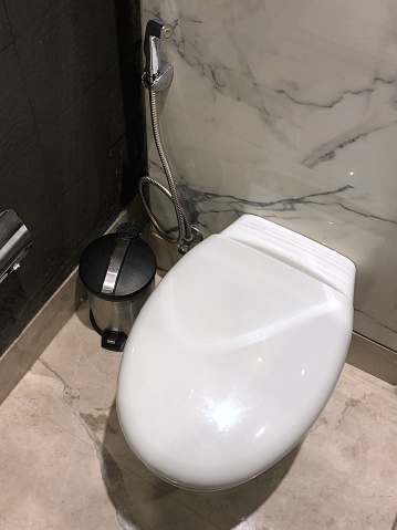 Image Of Luxury White Indian Toilet With Bathroom Hygiene