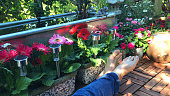 Image of man relaxing in sunny garden on square parquet decking tiles on hot day in sunny, sitting in shade wearing blue jeans barefoot feet next raised galvanised metal rectangular pond trough water feature, gerbera flowers / roses in pots, solar lights