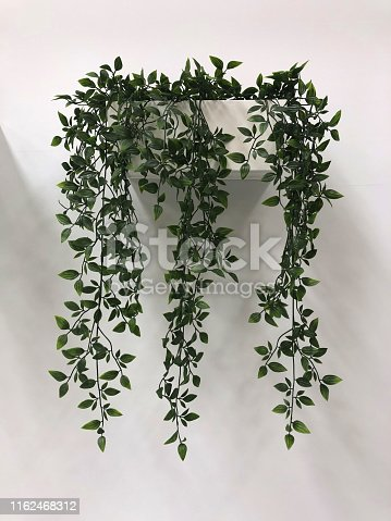 istock Image of modern artificial trailing indoor house plants with long plastic stems and green silk leaves, fake Tradescantia 'Green Hill' wandering Jew cascading hanging down from wall planter flower pot / white plastic troughs for modern interior design 1162468312
