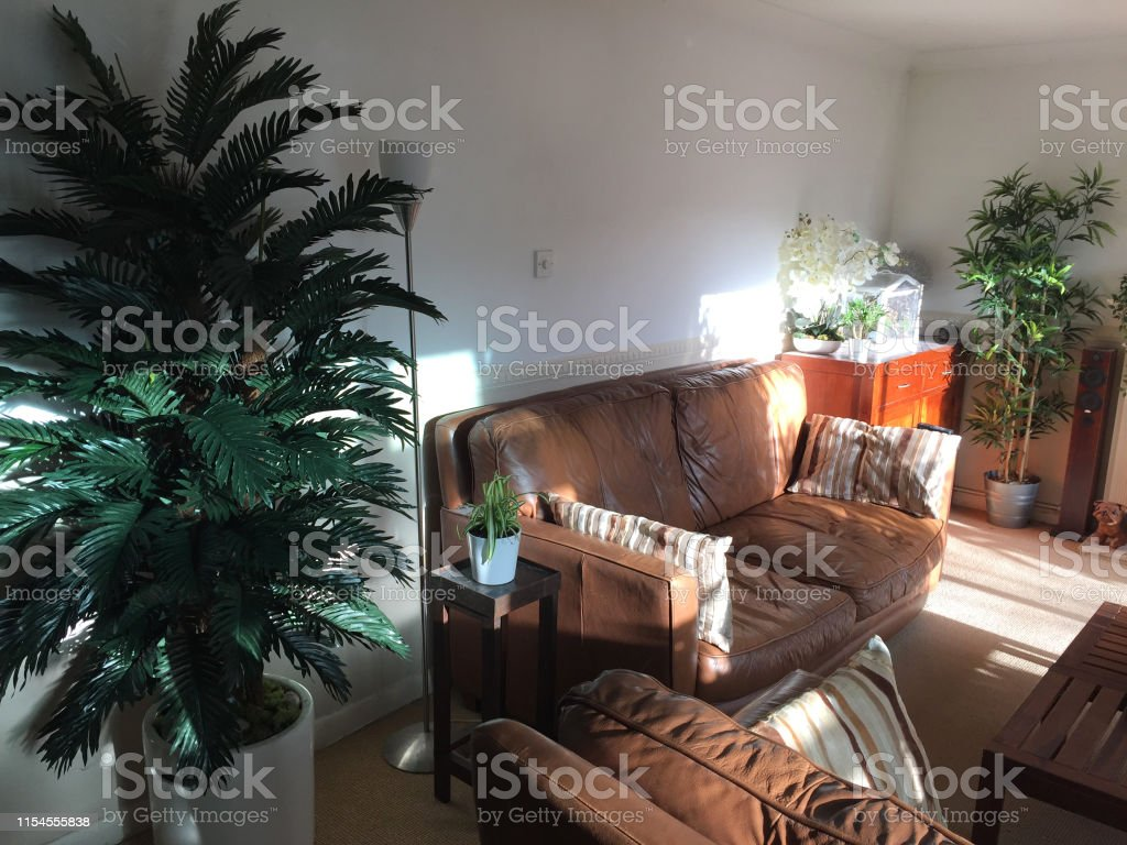 Image Of Modern Lounge Sitting Room Home Interior With Brown ...