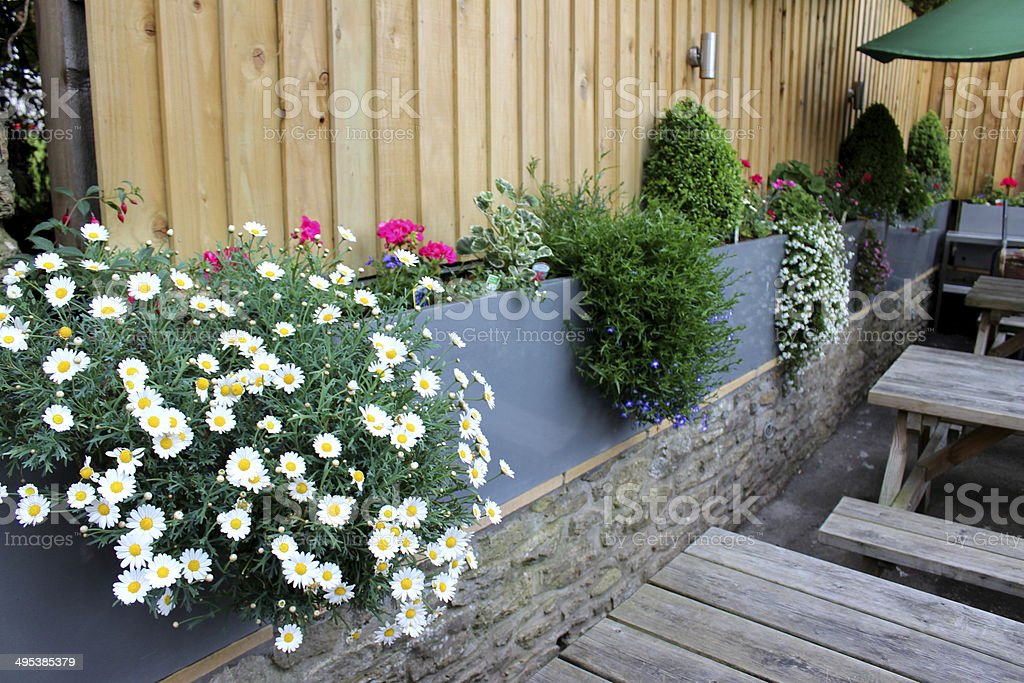 Image of modern zinc troughs in garden, planted with flowers royalty-free stock photo