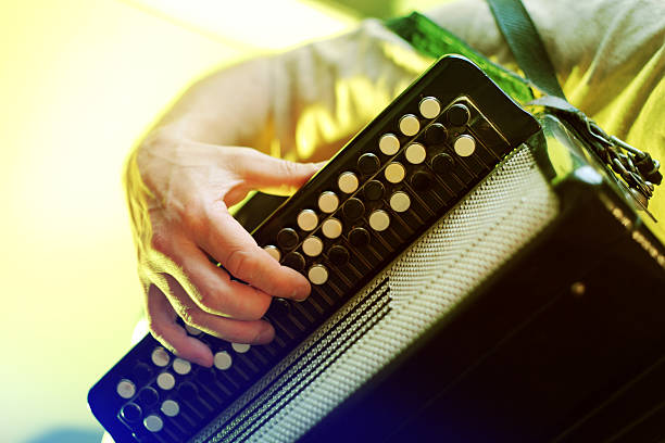 image of musician playing on accordion closeup - accordion stock photos and pictures